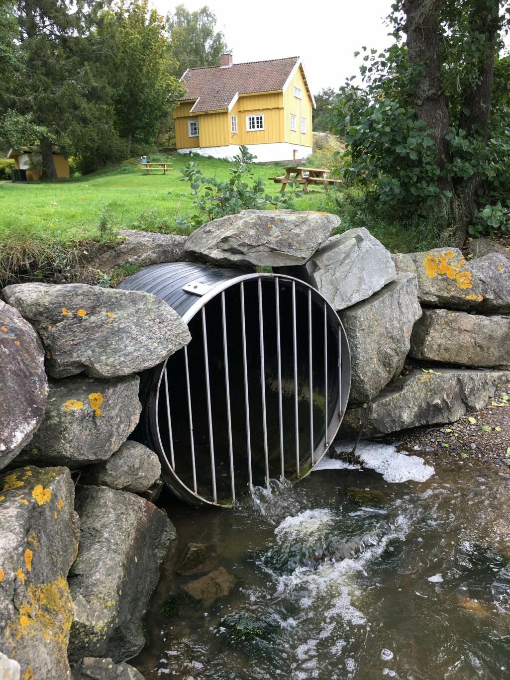 De store vannverkene har trygt drikkevann. Arve Heistad vil ha mer kunnskap med tanke på områder med små, private vannforsyningsløsninger og utslipp fra spredte avløpsanlegg.