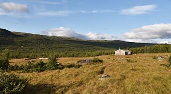 Husdyr og folk gjorde Hardangervidda til åpent landskap