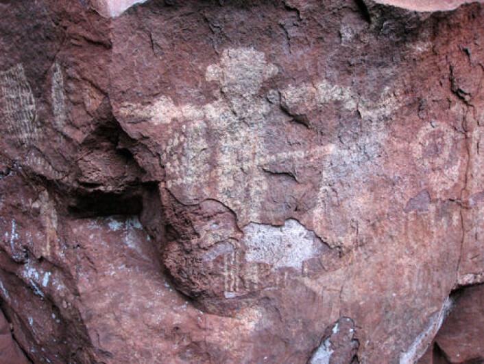 En menneskelignende figur omgitt av dyr og symboler. Tegningene skal være mellom 4000 og 10 000 år gamle og har likhetstrekk med tilsvarende bergkunst funnet andre steder i Brasil. (Foto: Alexine Keuroghlian/WCS)