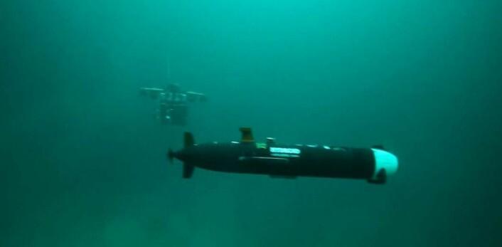 En AUV i forgrunnen, langtrekkende selvgående miniubåt som kan utforske store havbunnområder. AUV står for autonomous underwater vehicle. I bakgrunnen skimtes en ROV, remotely operated vehicle. Til sammen ser de to langt og dypt. (Foto: AUR-lab, NTNU)