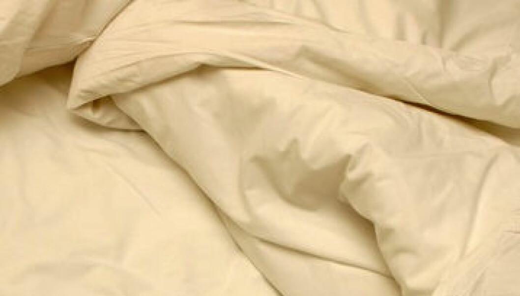Sex i søvne