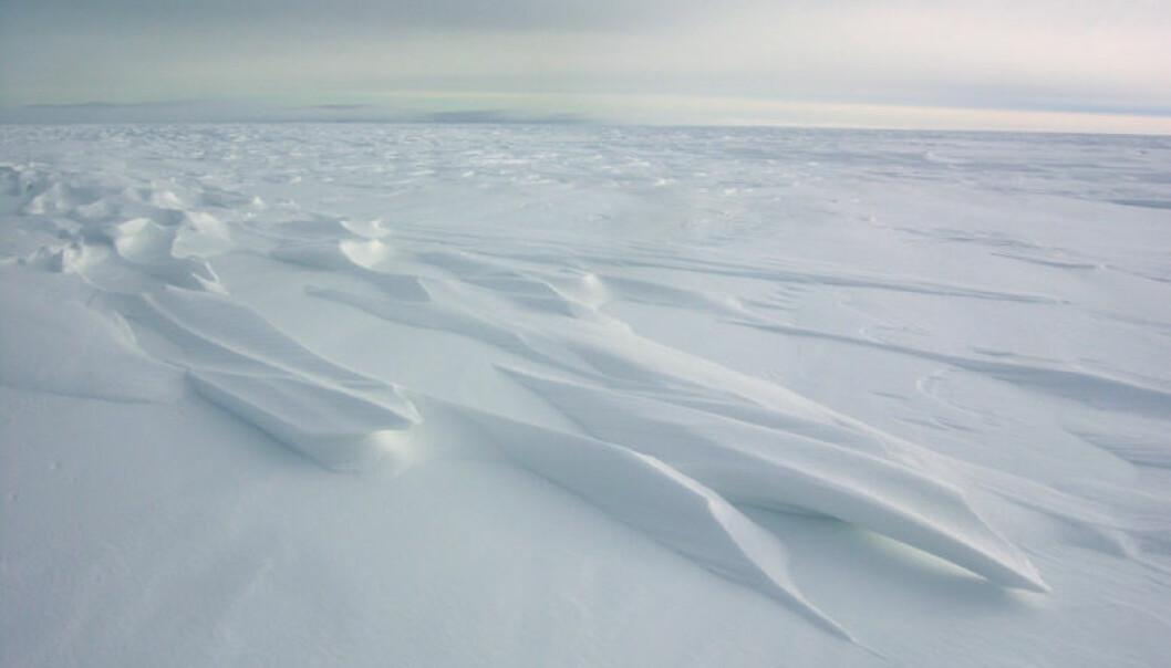 """Polarlandskap. (Foto: Norsk Polarinstitutt)"""