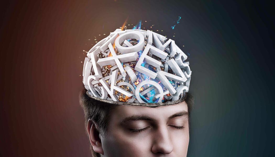 Hjernen kategoriserer ord, også etter ulike former for kjønn som en, ei og ei i norsk. Andre språk har andre regler.