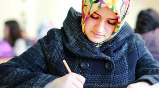 Innvandrerorganisasjoner er skoler i byråkrati
