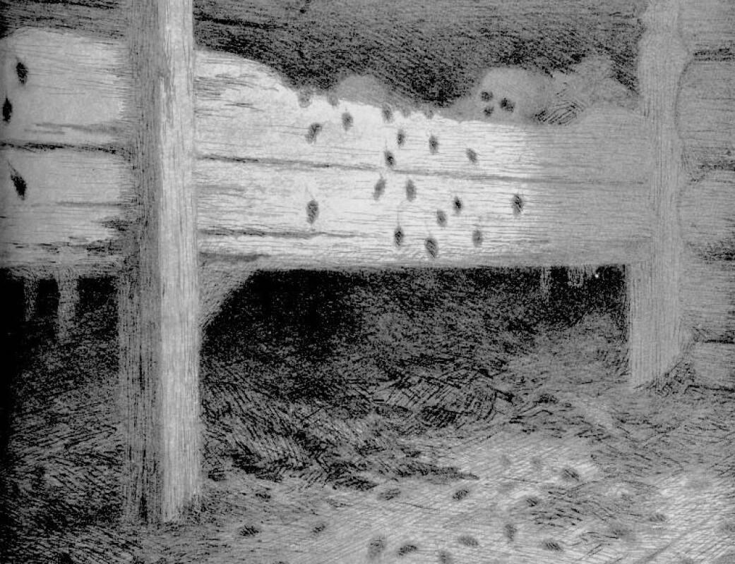 """""""Musstad"""", tegning av Theodor Kittelsen."""