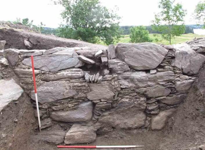 Stor var overraskelsen for Skre og kolleger da de hadde gravd seg halvannen meter ned i en renessansehage fra 1600-årene, og så avdekket middelaldersk murverk stående i 1,3 meters høyde. Muren  er rester av en kongsgårdsbygning fra rundt år 1300. Den er ett kongsgårdsanleggene som har stått på Avaldsnes gjennom historien. (Foto: Kongsgårdprosjektet Avaldsnes, Universitetet i Oslo.)