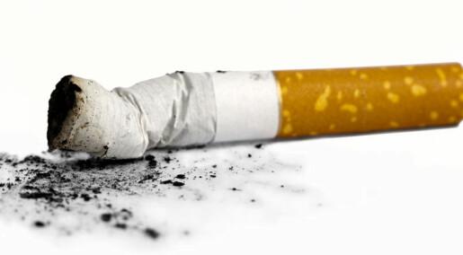 Små effektar av røykekampanje