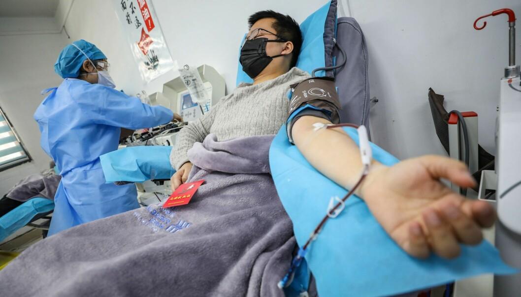 En kinesisk lege donerer blod etter selv å ha blitt frisk fra covid-19. Deler av blodet - blodplasmaet - kan kanskje hjelpe andre pasienter å bli friske.