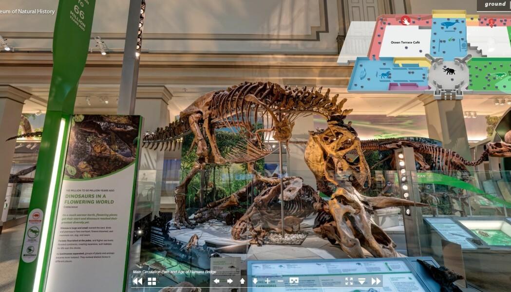 Du kan ta en virtuell vandring blant dinosaurfossiler på USAs National Museum of Natural History.