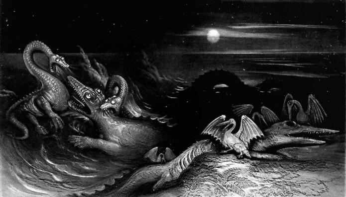 """""""Sjømonstrene"""" svaneøgler og fiskeøgler i kamp med hverandre i denne tegningen fra 1840."""