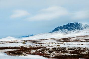 Hardangervidda. (Foto: www.colourbox.no)