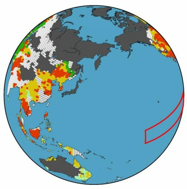 El Niños påvirkning av maishøsten. Mørkegrønn betyr: sikker positiv påvirkning. Rød: sikker negativ påvirkning. Lysegrønn: mer usikker positiv påvirkning. Gul: mer usikker negativ påvirkning. Hvit: ingen data var tilgjengelige. Grå: ikke landbruksland. Den røde rammen i Stillehavet viser hvor man særlig måler El Niño. (Foto: (Grafikk: Toshichika Iizumi))