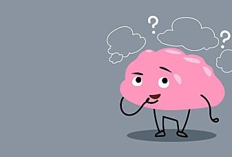 Husker hjernen alt jeg har gjort?