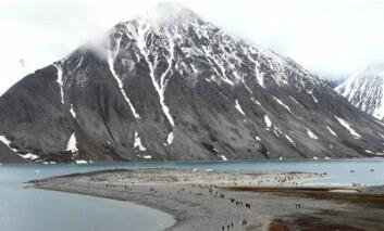 """""""Over 30 000 cruiseturister besøker Svalbard hvert år, og en av de mest besøkte plassene er Magdalenefjorden på nordvestsiden av Spitsbergen. (Foto: Chris Ware)"""