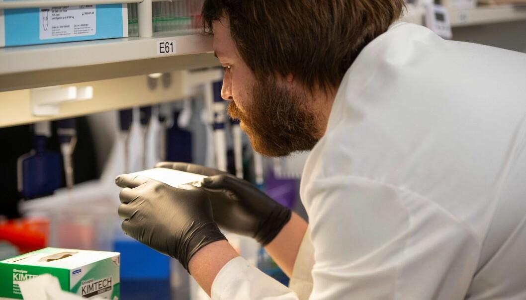 Nå jobber forskere over hele verden for å finne en korona-medisin
