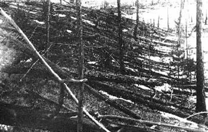 Tusenvis av trær ble i 1908 lagt flate av en voldsom eksplosjon ved Tunguska i Sibir. (Foto: Wikimedia Commons/Kulik-ekspedisjonen)