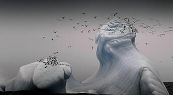 Se matrosens beste bilder fra tokt i Arktis