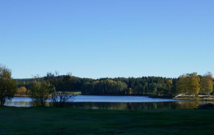 Lundebyvann, Indre Østfold, hvor Camilla Hagman har gjort deler av forskningen sin.