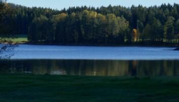 Innsjøenes detektiv: Jakten på innsjøenes fortid