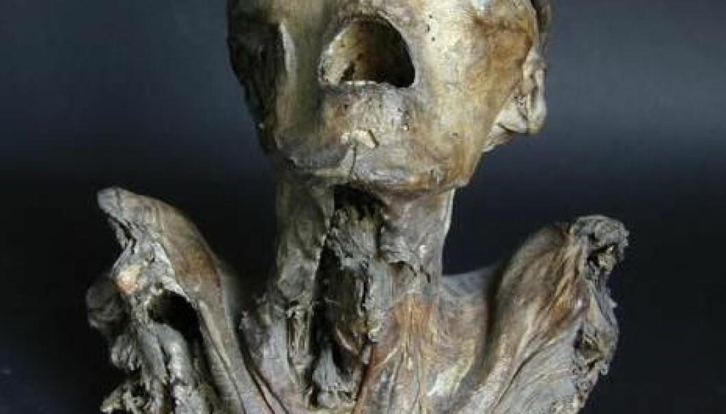 Mumiehode avslører avansert teknikk