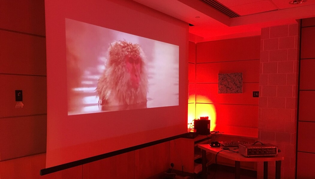 Forskerne rigget til rom som skulle simulere en psykedelisk fest med musikk, lys og video.