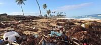 Sementfabrikker kan stanse forsøpling av havet