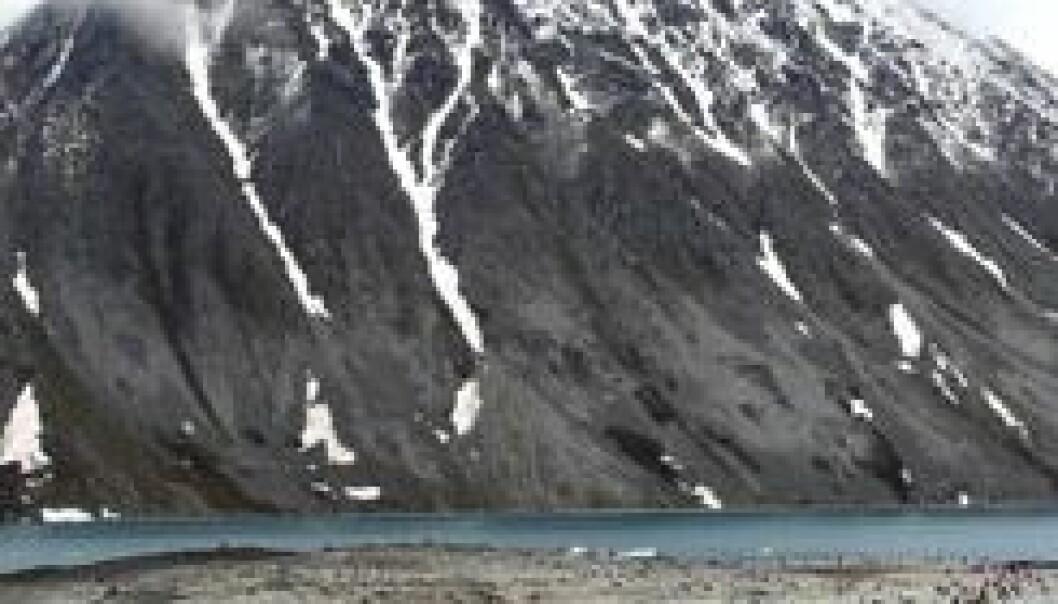 Magdalenefjorden på nordvestsiden av Spitsbergen. Chris Ware