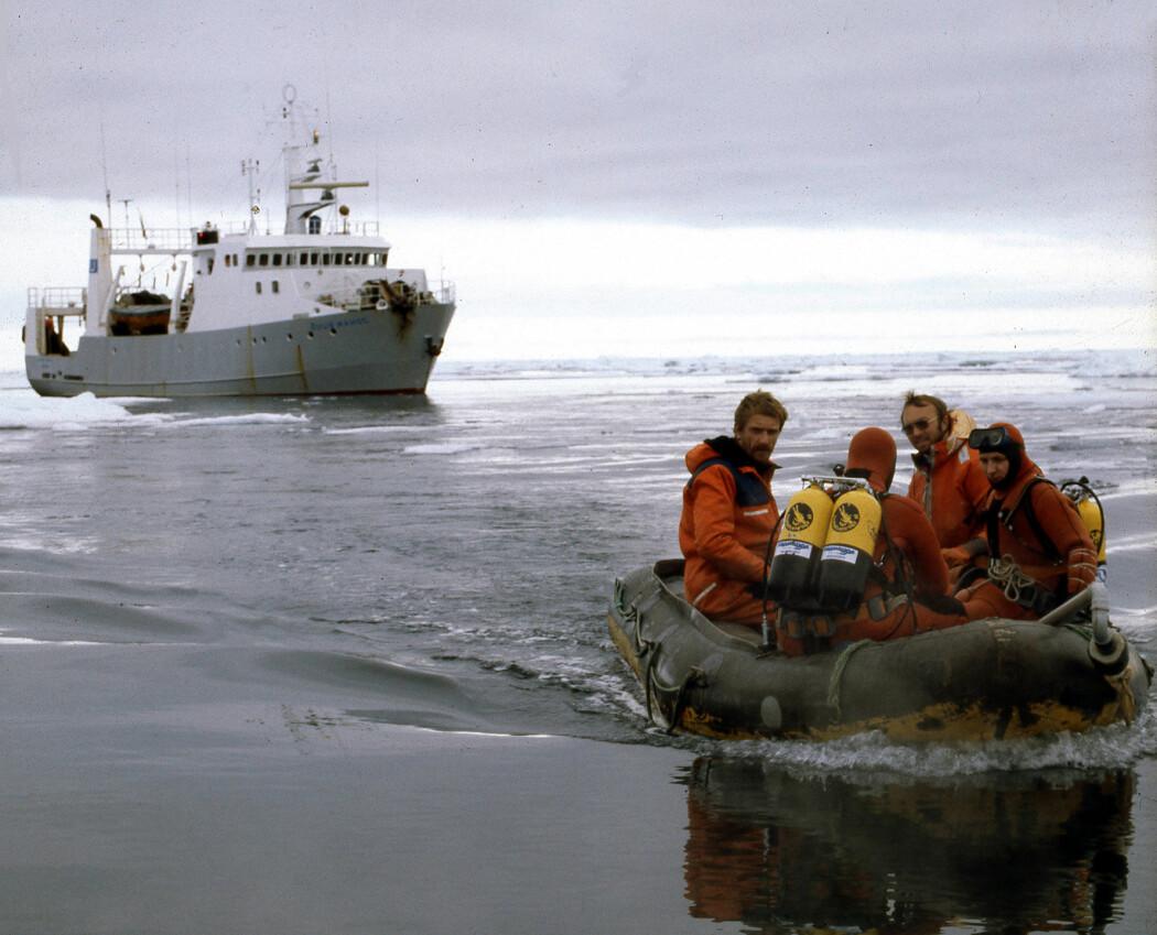 Dykkere på vei mot dykkeroppdrag utenfor den lille øya Moffen på nordsiden av Svalbard i 1980.