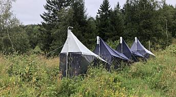 Nå kan forskere bruke strekkoder til å overvåke insektene i Norge