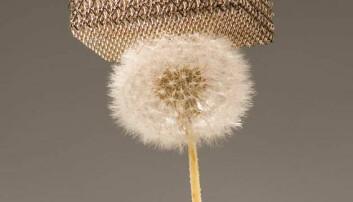 Dette nye materialet er 99,99 prosent luft, og så lett at det kan hvile på løvetannfluff. Dan Little, HRL Laboratories LLC