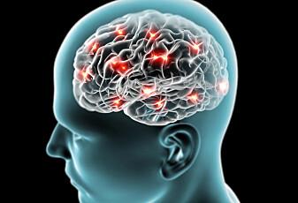 Kan hjernen bli full?