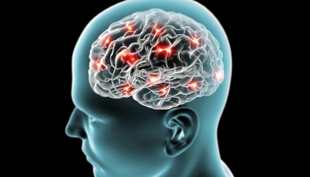 Vi kan tenke på hjernen som en muskel, jo mer vi trener den jo sterkere blir den.