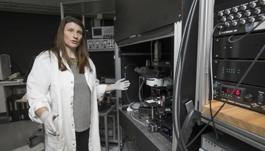 – Vi har trodd at hjernen ikke hadde noe rensesystem. Men det viser seg å ikke stemme. Det finnes nemlig finnes hittil ukjente mekanismer som utfører denne vaskejobben, forteller forsker Anna Thoren.