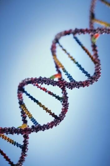 DNA-streng. (Foto: Photos.com)