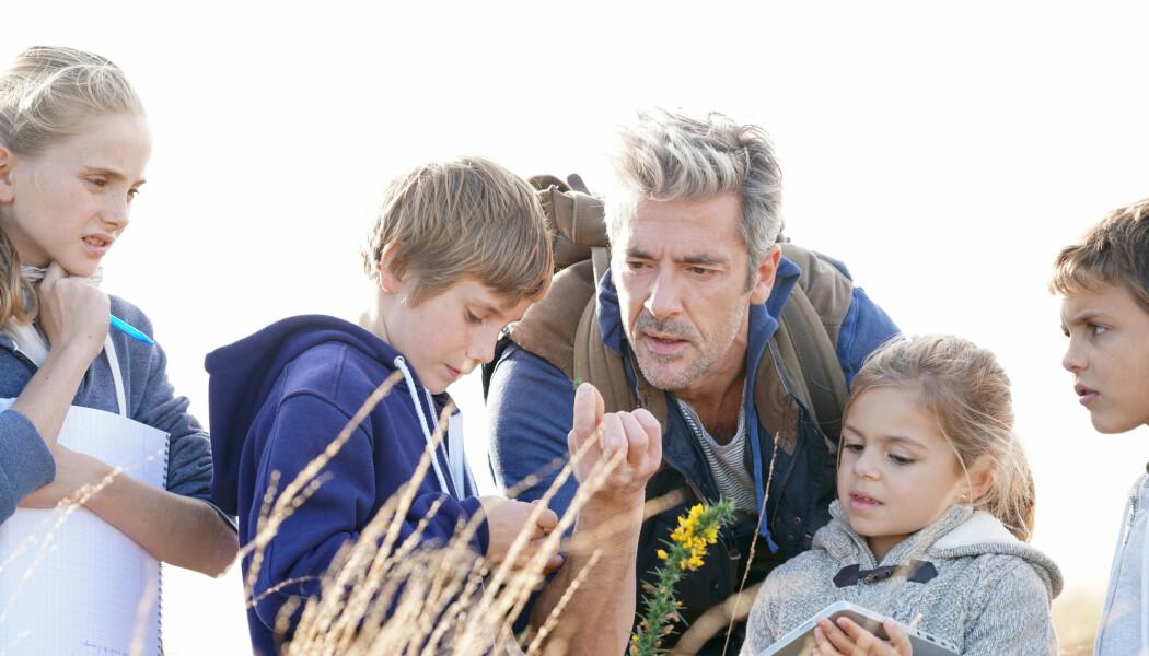 – Hvis lærere i barnehagen eller grunnskolen kan lite om arter, hvem skal da fortelle barn og unge om alt som finnes ute i naturen? spør Tuula Skarstein fra Universitetet i Stavanger.