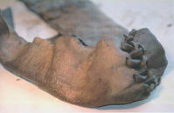 """""""Norges eldste sko."""""""