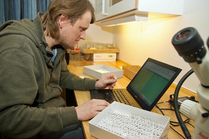Anders Endrestøl tar prøver av alt i insektkassene sine – noe av det vet han ikke sikkert hva er før prøvene er analysert. (Foto: Georg Mathisen)