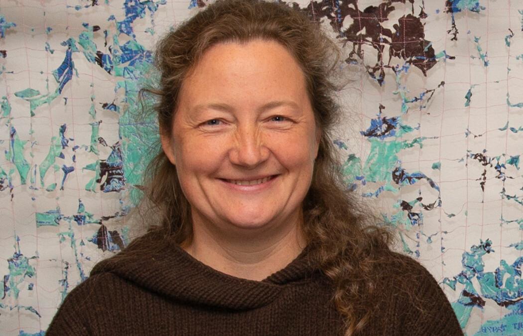 Professor Valeria Schwanitz er ein av dei som skal forske på korleis forskingsdata på energi kan bli tilgjengeleg for fleire.