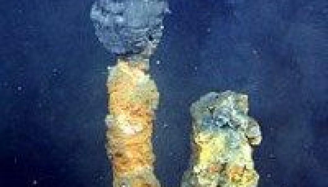 Store mineralverdier på Norges havbunn