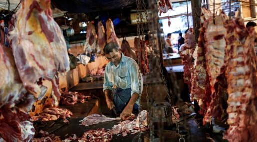 India er kjent som et land av vegetarianere, men forskere finner mye kjøttspising