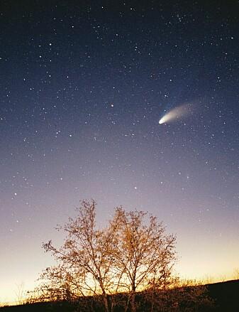 Kometer har en hale av gass og støv som er synlig. Det hadde ikke 'Oumuamua.