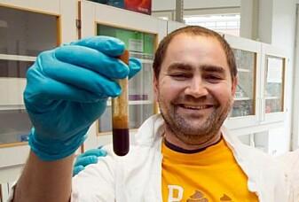 Vi ville rett og slett ikke overlevd uten bakterier i blant annet tarmen, forteller Pål Trosvik.