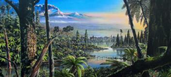 Slik så det ut ved Sørpolen da dinosaurene levde