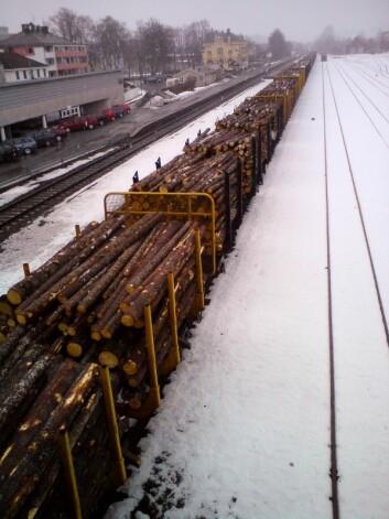 Tømmertransport på jernbane er klimasmart. (Foto: Arne Steffenrem, Skog og landskap)