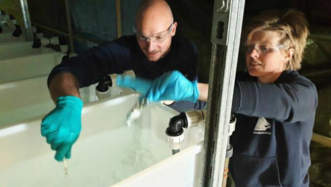 På forskningsstasjonen på Kvaløya. Pernilla Carlsson fra NIVA tilfører hydrogenperoksid i et kar mens Luca Tassara fra Akvaplan-niva rører.