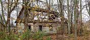 Områdene rundt Tsjernobyl kan få nytt liv