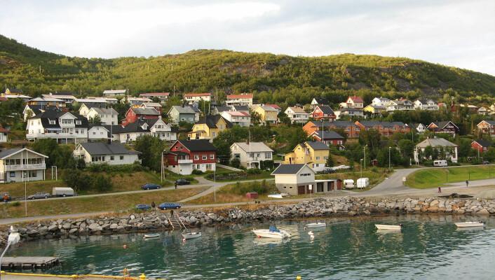 Mange eneboliger og få leiligheter – Skjervøy er blant stedene som er undersøkt i NIBR-rapporten. (Foto: Wikimedia Commons)