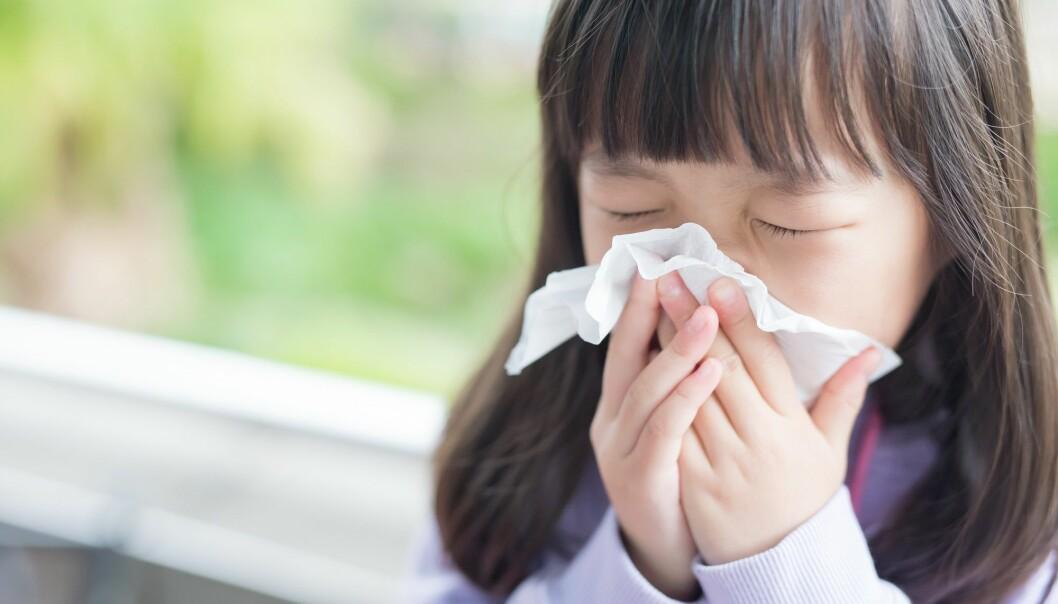En skikkelig forkjølelse gjør oss dessverre ikke bedre rustet mot andre sykdommer.