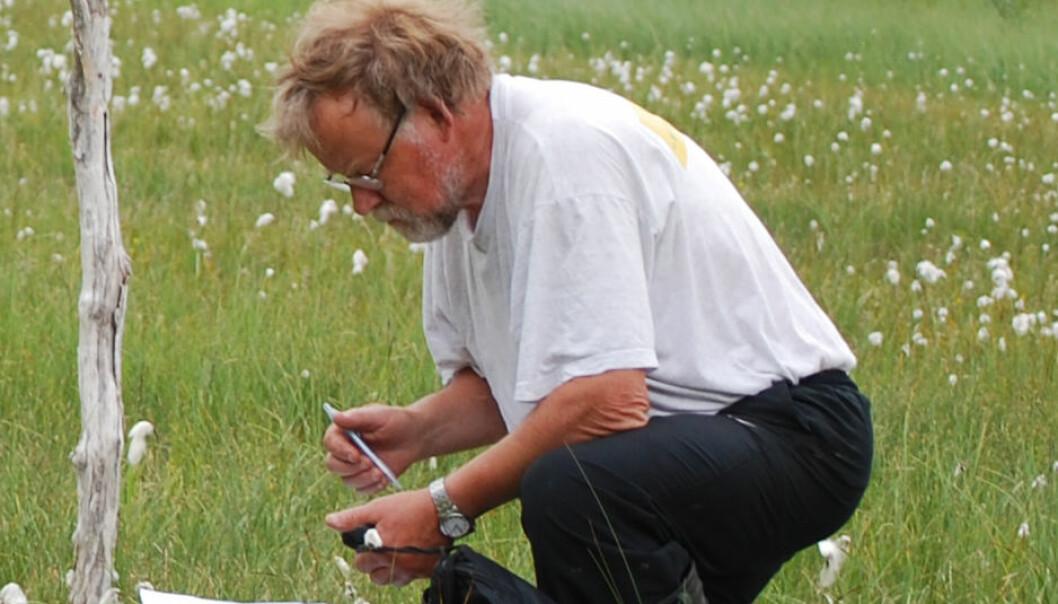 Kjell Ivar Flatberg under feltarbeid. (Foto: Privat)