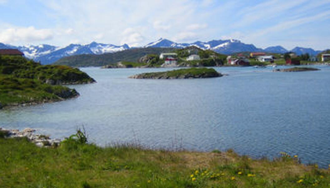 """Sommarøy i Troms."""